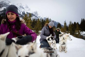 Banff/Dogsledding