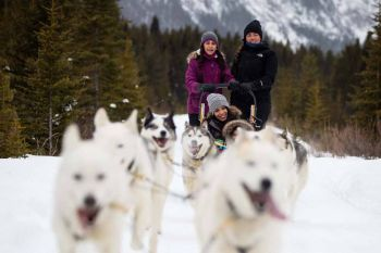 Banff/Dogsledding 3